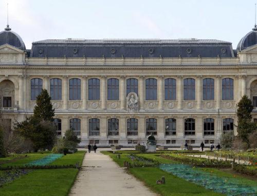 Le Muséum National d'Histoire Naturelle de Paris valide l'absence fongique sur le PBO Distri-Protect®